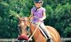 Jupiter Equestrian Center - Jupiter: One or Three Horseback-Riding Lessons or One Day of Summer Camp at Jupiter Equestrian Center (Up to 59% Off)