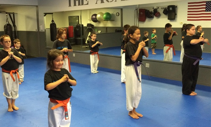 The Academy of Martial Arts - Multiple Locations: $30 for $110 Worth of Martial-Arts Lessons — The Academy of Martial Arts