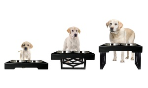 Pet Zone Designer Diner Adjustable Dog Feeder: Pet Zone Designer Diner Adjustable Dog Feeder