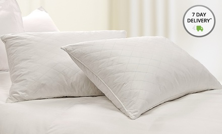 2-Pack of Club Le Med Back or Side Sleeper Pillows