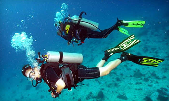 Blue Sea Adventures - Redbud: $50 Towards Scuba Diving Classes and Certifications