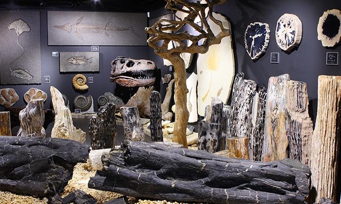 Welt der Kristalle Museum - Dietingen: 2 oder 4 Eintrittskarten für das Welt der Kristalle Museum ab 6 € (bis zu 55% sparen*)
