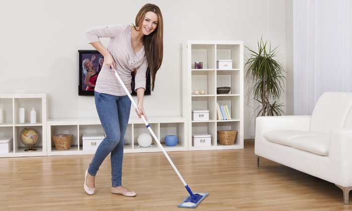 Sue Legore Cleaning - Phoenix: Housecleaning or WIndow Cleaning from Sue Legore Cleaning (Up to 45% Off)