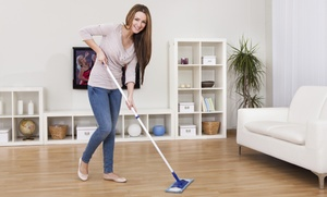 Sue Legore Cleaning: Housecleaning or WIndow Cleaning from Sue Legore Cleaning (Up to 45% Off)