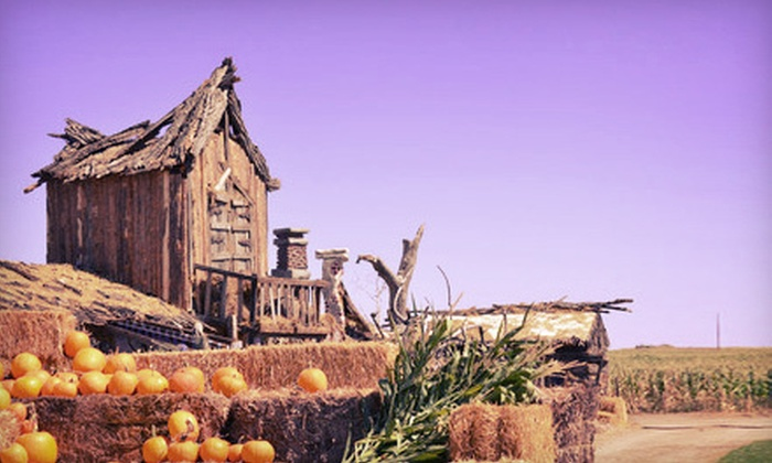 Mile High Farms - Bennett: Autumn Farm Activities for Two or Four or One Season Pass at Mile High Farms (Up to 52% Off)