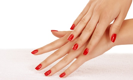 Basic Manicure, Spa Pedicure, or Both at Metamorphosis Beauty Group (Up to 54% Off)