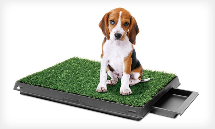 PetZoom Indoor Dog-Relief System: $39 for a PetZoom Pet Park Deluxe Indoor Dog-Relief System ($99.99 List Price). Free Shipping.