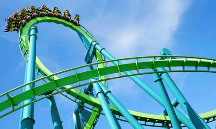 $39.99 for Admission for One to Cedar Point - Everyone Pays Kids' Price ($61.99 Value)