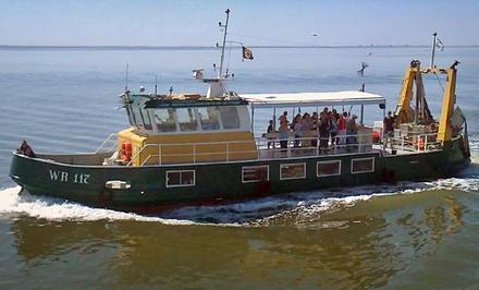 Twee uur garnalen vissen op de Waddenzee voor 110 personen