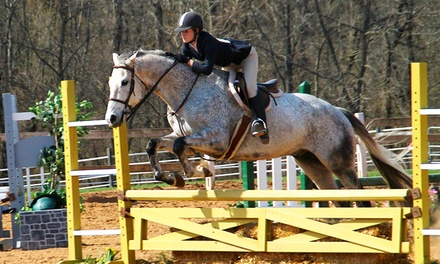 Two or Three 60-Minute Group Horseback-Riding Lessons at Encore Farms (Up to 51% Off)