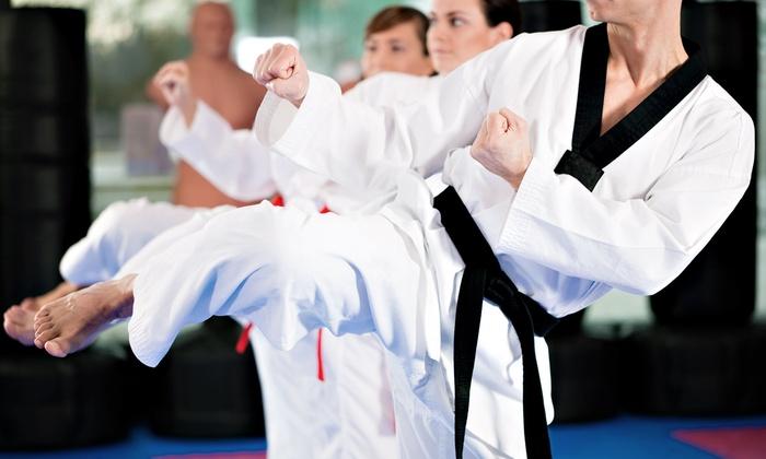 Sonoma County Martial Arts Center - Rohnert Park: 10 or 20 Martial-Arts Classes at Sonoma County Martial Arts Center (Up to 84% Off)