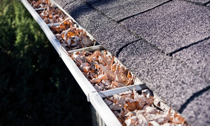 Affordable Gutter Covers - Eugene: 200 or 300 Linear Feet of Gutter Cleaning for a One-Story Home from Affordable Gutter Covers (Up to 64% Off)