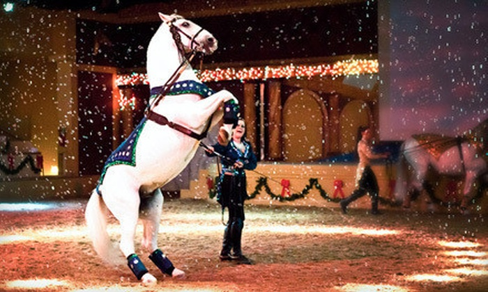 The Dancing Horses Theatre - Chicago:  $17 for a Horse and Exotic-Bird Show and Backstage Tour at The Dancing Horses Theatre (Up to $35 Value)