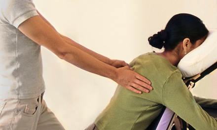 One or Three Chiropractic Consultations with Adjustments and Muscle Therapy at 1st Choice Treatment Clinic (81% Off)