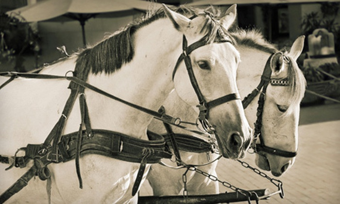 Support Local Downriver - Flat Rock: Carriage Ride and Hot Chocolate for Two or Four from Support Local Downriver (Up to 56% Off). Three Dates Available.