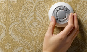Air National of Houston: $25 for a 21-Point Heating and AC-System Inspection from Air National of Houston ($79.99 Value)