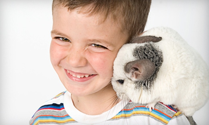 Pawsitively Pets for Kids - Multiple Locations: Three-Day Little Lambs or Big Bunnies or Five-Day Safari March-Break Camp at Pawsitively Pets for Kids (Up to 52% Off)