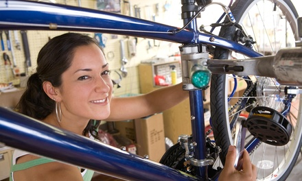 Up to 72% Off Personalized Bicycle Fitting at LakeShore Bicycles