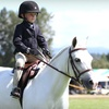 Up to 55% Off Horseback-Riding Lessons