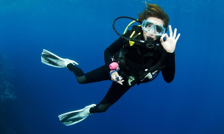 Discover Scuba Diving Course for One or Two at Sports Cove (Up to 54% Off)