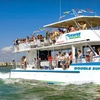 51% Off a Dolphin-Watch Cruise from Pure Naples