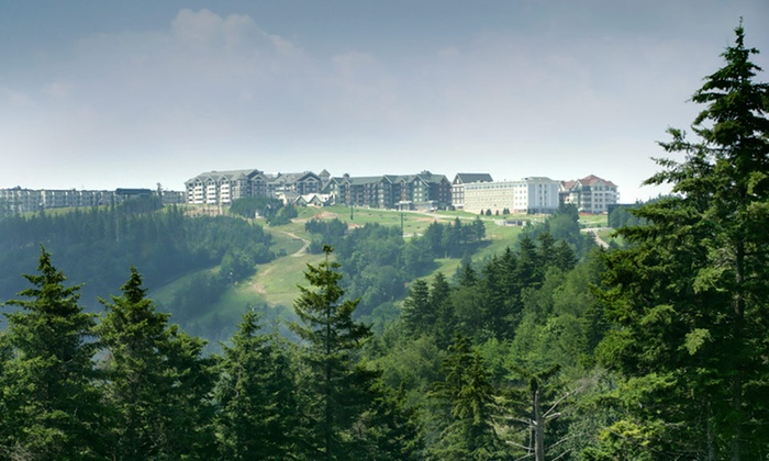 null - Roanoke: Stay for Up to Four at Mountain Lodge in Snowshoe, WV; Dates into September Available