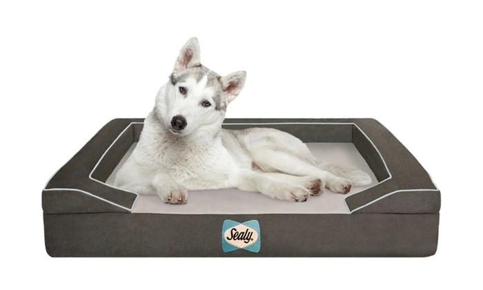 Premium Sealy Dog Bed Groupon Goods