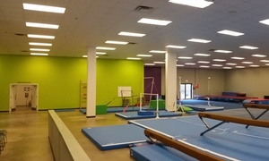 Brussells Gymnastics: Up to 50% Off Gymnastics Classes or Camps at Brussells Gymnastics