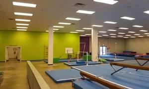 Brussells Gymnastics: Up to 50% Off Gymnastics Classes or Camps at Brussells Gymnastics