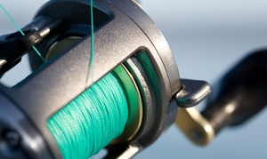 Gone Fishing Colorado: Fly- and Spin-Fishing Packages from Gone Fishing Colorado (Up to 48% Off). Four Options Available.
