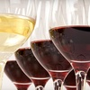 Up to 47% Off Wine Education Class