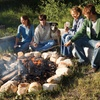 61% Off One-Night Cabin Stay