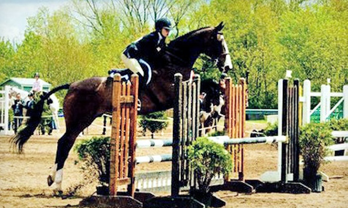Essex Equestrian Center - West Orange: One or Two 60-Minute Horsemanship Lessons at Essex Equestrian Center in West Orange (Up to 60% Off)