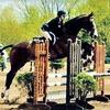 Up to 60% Off Horsemanship Lessons in West Orange