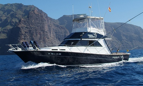 Paseo en barco con refresco, avistamiento de cetáceos y baño con tortugas para dos o cuatro desde 24,90 € en Arona