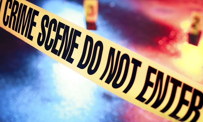 Online Academies: Online Forensic Science and Profiling Course with Online Academies (88% Off)