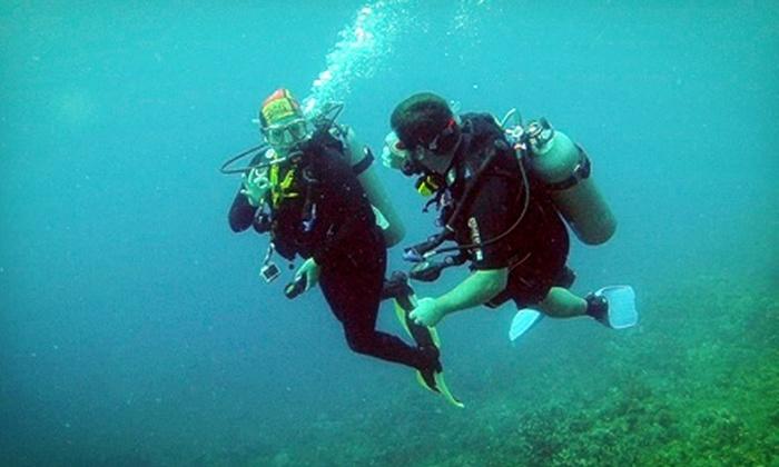 Aquatic Adventures of Florida - City Of Zephyrhills: $179 for Open-Water Scuba-Diving Class and Certification at Aquatic Adventures of Florida ($410 Value)