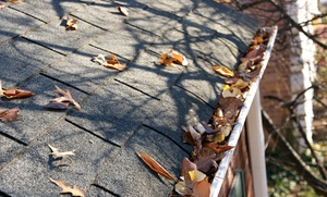 All Pro Property Service: Gutter Cleaning for House Up to 3,000 or 4,000 Square Feet from All Pro Property Service (Up to 60% Off)