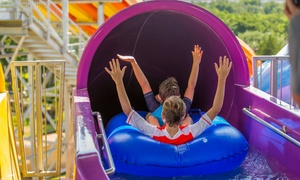 Hawaiian Falls: One, Two, or Four Season-Pass Packages with Buddy Passes, Coupons, & Souvenir Cups at Hawaiian Falls (78% Off)