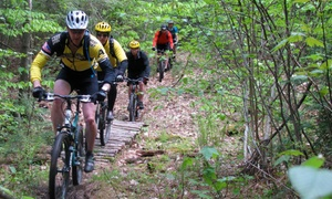 Back Country Excursions: Day or Overnight Mountain Biking Packages for Two or Four from Back Country Excursions (Up to 38% Off)