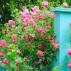 48% Off House and Garden Tours