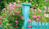 Garden Club of Virginia - Richmond: A Week-Long Statewide Pass for One from Garden Club of Virginia (50% Off)