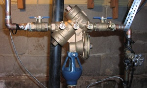 E-Backflow LLC: Plumbing Inspection from E-Backflow (44% Off)