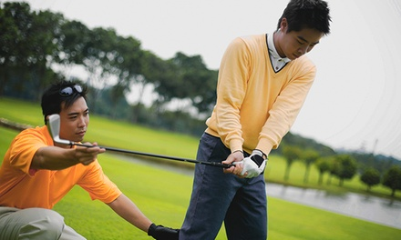 One, Two, or Four 30-Minute Golf Lessons at David Stephens Golf (Up to 50% Off)