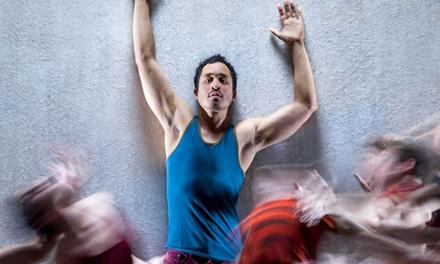 Three Performances at American Dance Institute (Through April 30)