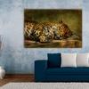 "Lois Bryan Animals 16""x24"" Canvas Art"