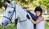 Lori Ragland Performance Horses - Kyle-Buda: Private One-Hour Horseback-Riding Lesson for One or Two at Lori Ragland Performance Horses (Up to 51% Off)