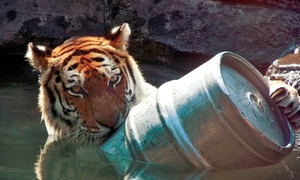 Up to 58% Off Zoo Brew at Blank Park Zoo at Blank Park Zoo, plus 6.0% Cash Back from Ebates.