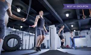 CrossFit Lake Villa: CrossFit Classes at CrossFit Lake Villa (Up to 80% Off). Three Options Available.