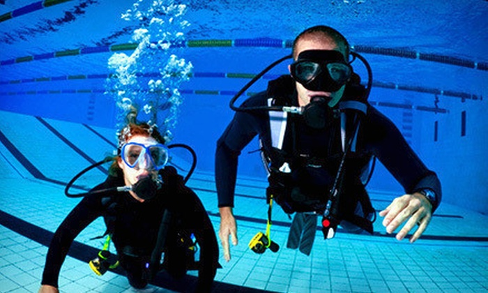 Orange County Scuba Dive & Photo - Irvine Business Complex: Catalina Island Stay and Scuba Certification from Orange County Scuba Dive & Photo (67% Off). Three Options Available.